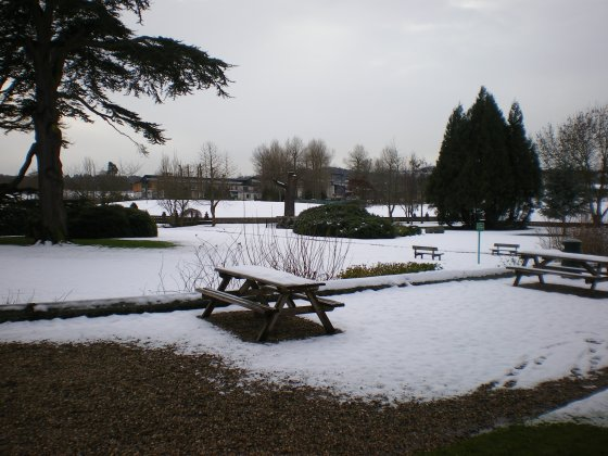 Woodhouse - Beaumanor - gardens under snow